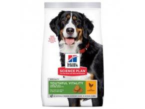 HILLS Canine Senior Large Breed 12 kg   + 2,5 kg ZDARMA !
