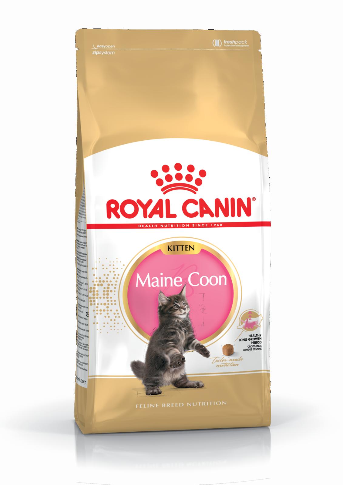 ROYAL CANIN Kitten Maine Coon 10 kg