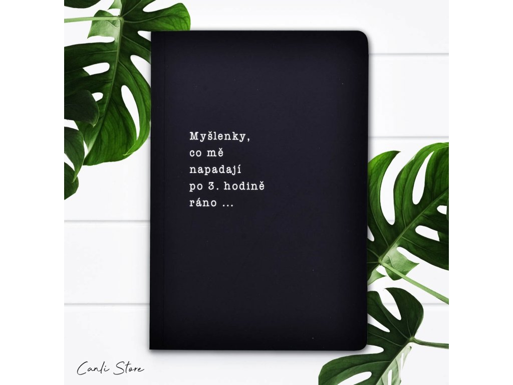 thoughts notebook