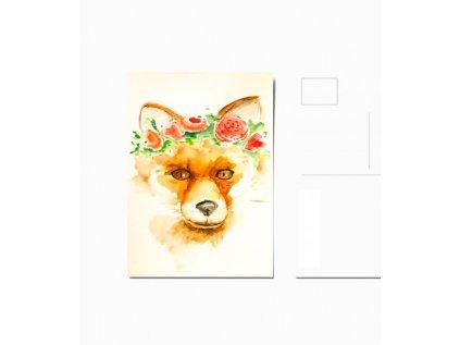 Pohled liška