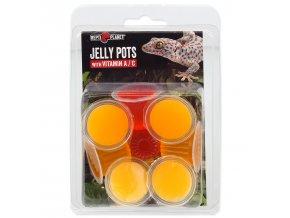 Krmivo REPTI PLANET Jelly Pots Fruit-8ks