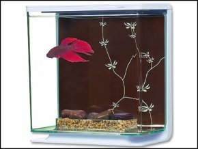 Akvárium MARINA Betta Kit Contemporary-3l