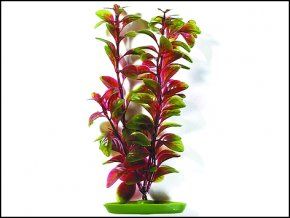 Rostlina LIVING WORLD Red Ludwigia 30 cm-1ks