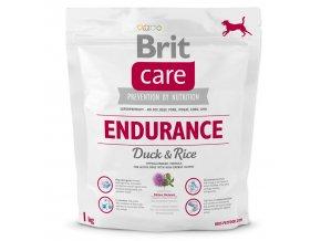BRIT Care Dog Endurance-1kg
