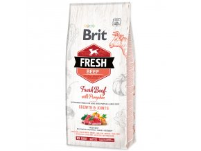 BRIT Fresh Beef with Pumpkin Puppy Large-12kg