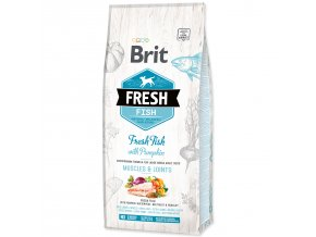 BRIT Fresh Fish with Pumpkin Adult Large-12kg