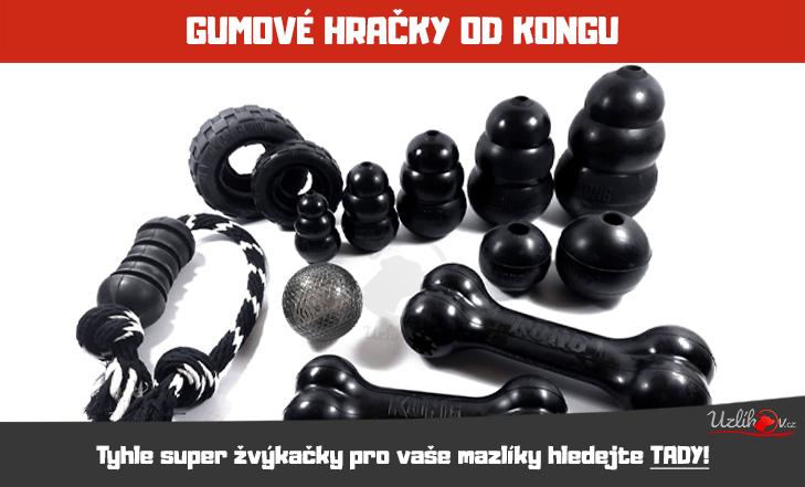 Extrémně odolné hračky KONG.
