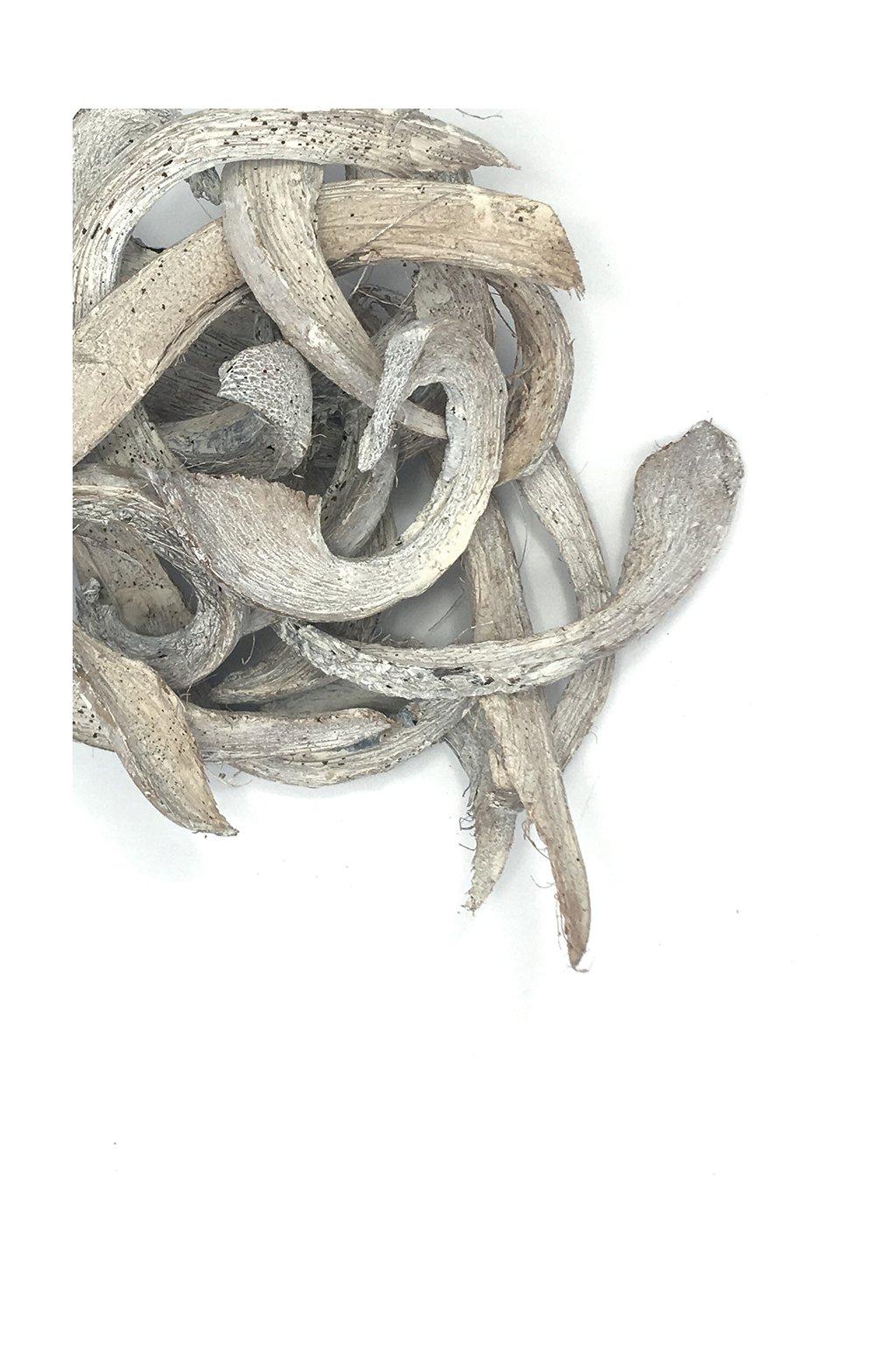 Dřevo barvené bílé