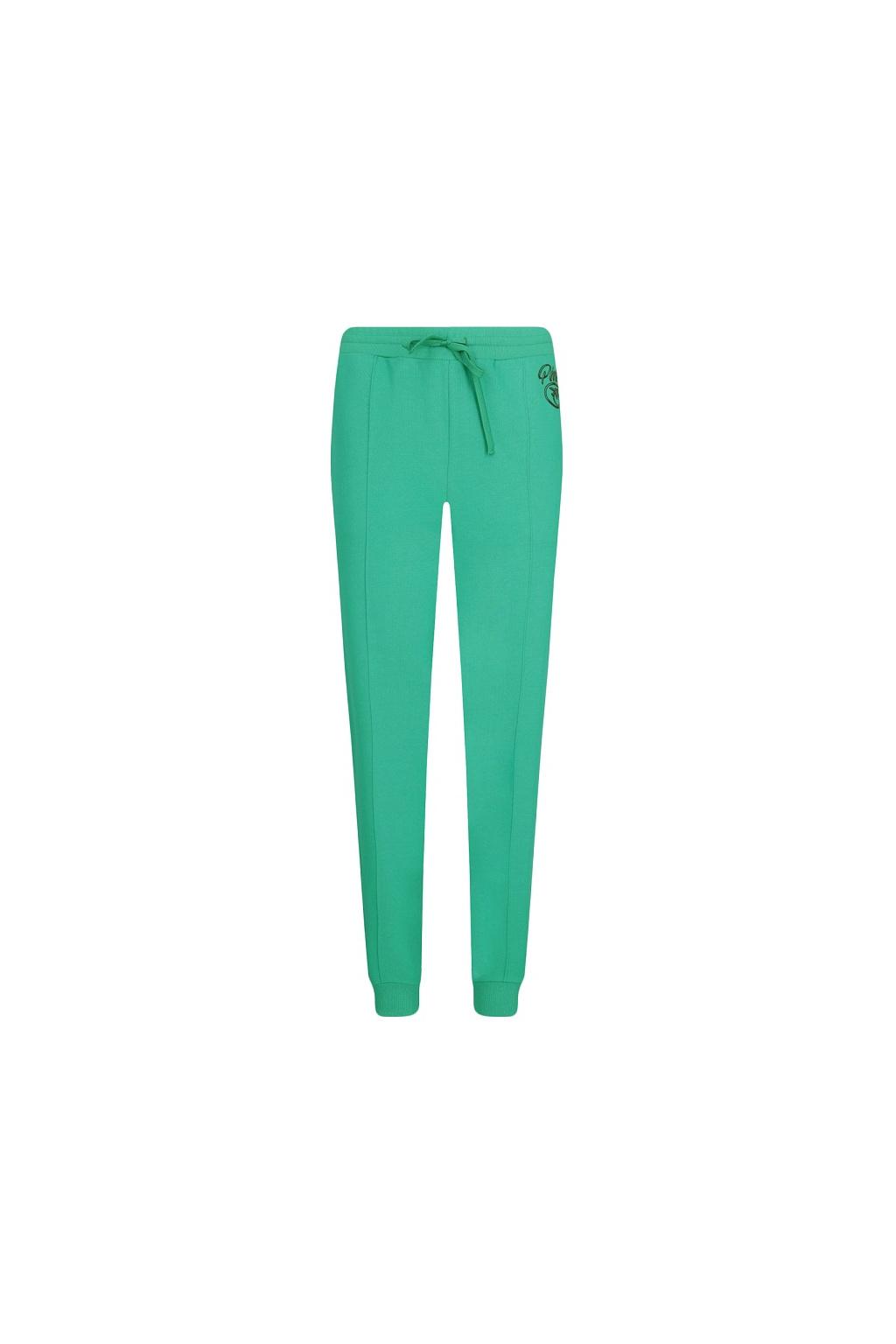 1N12XZ Y75F XA2 Dámské kalhoty Pinko Bugs zelené