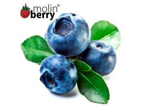 Molinberry Blueberry