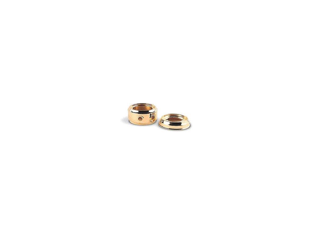 Kroužky D=170, zlato 2 otvory