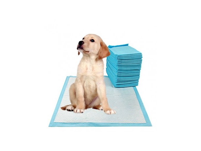 pets empire dog training pads pack of 50 pcs