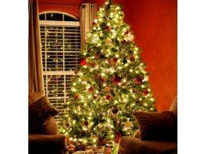 tradiční vánoční světýlka na stromeček led osvětlení na strom stromek do okna světelný závěs 10 metrů 100 led  stažený soubor