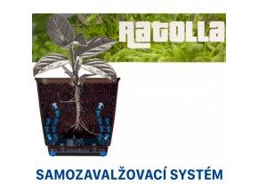 kvetinac ratolla case pw 500 antracit zavesny samozavlazovaci kvetinac truhlik