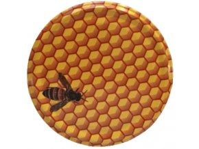 Včela malovaná