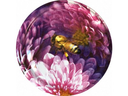 Včelka na růžovém květu 1