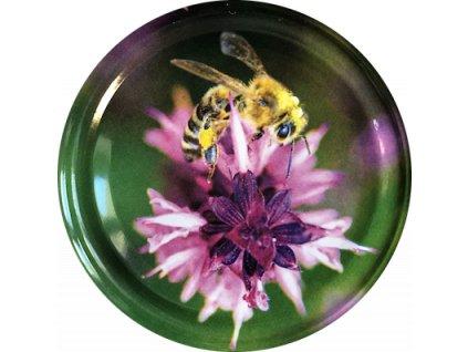 Včelka na bodláku