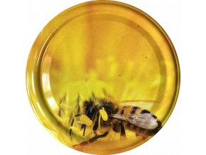 Včelka na žlutém květu 2