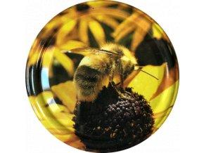 Včelka na žlutém květu 3