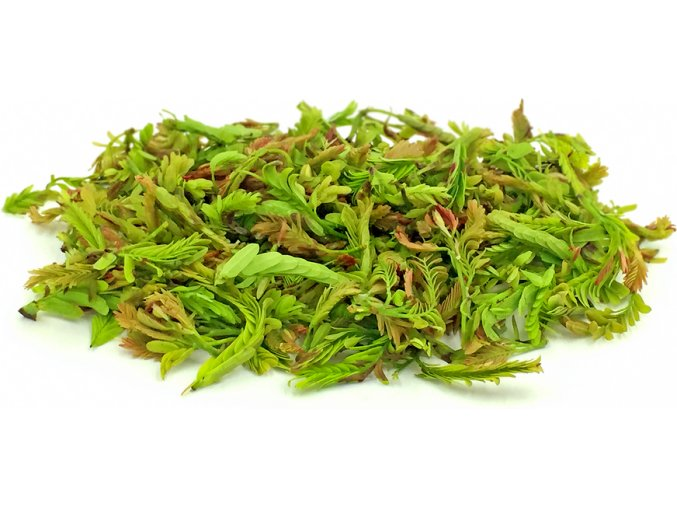 Young tamarind leaf 100g