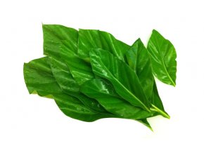 Baiyor leaf