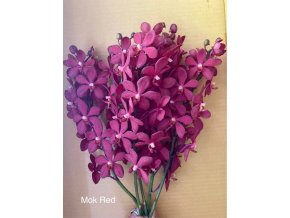 orchid mon red