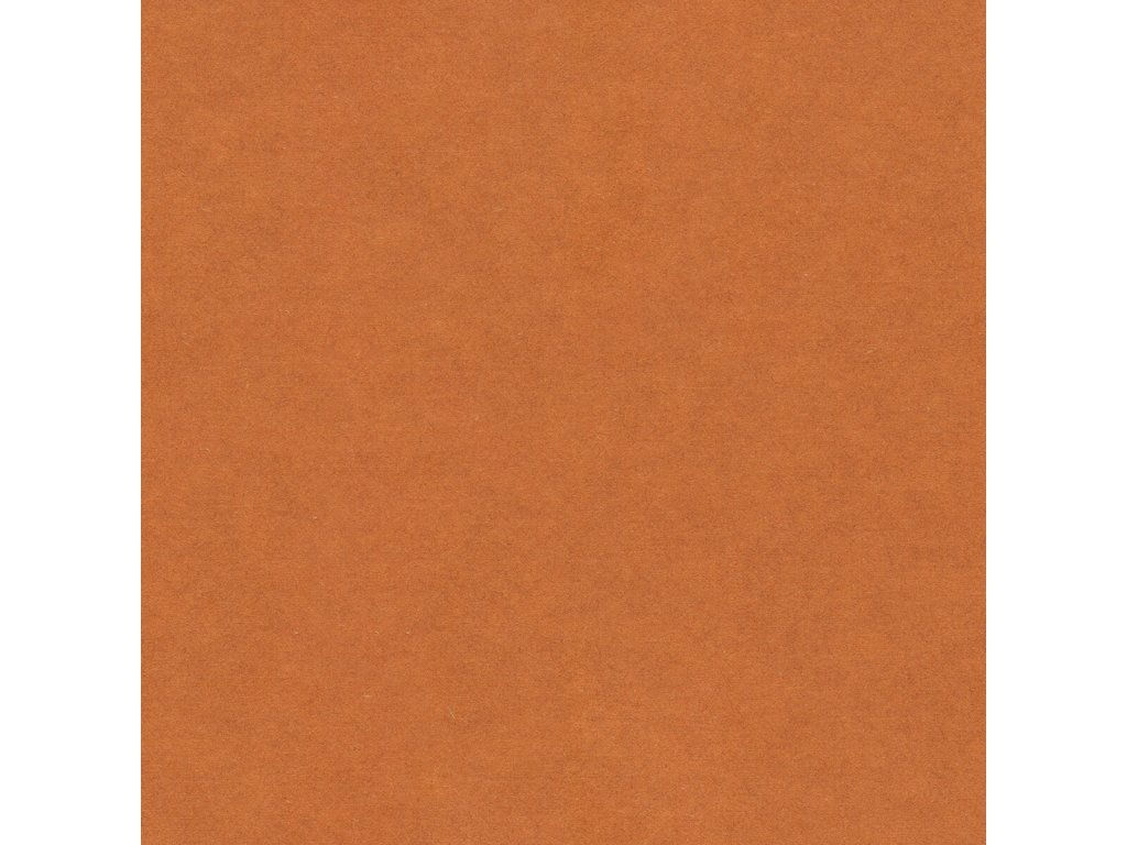 FORESCOLOR - Oranžová
