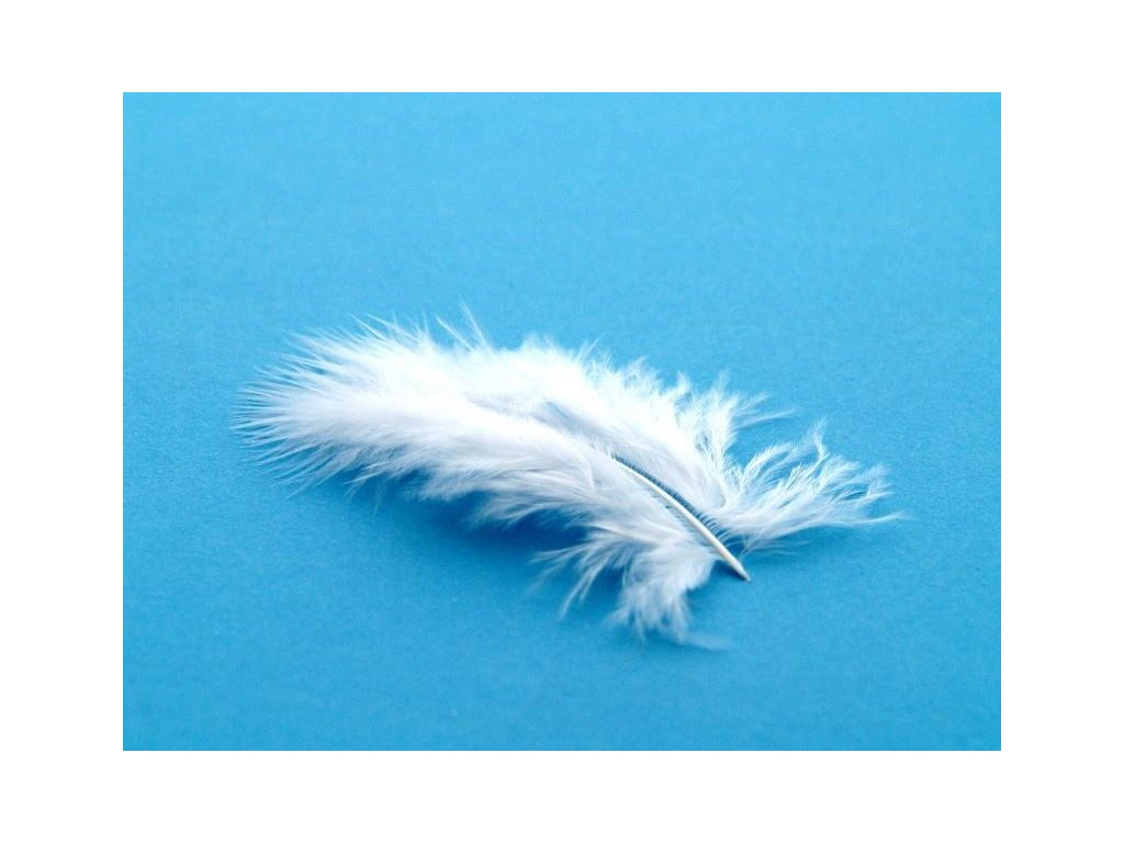 10 x peří Marabu bílé, malé