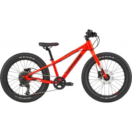 "CANNONDALE CUJO 20""+ RACE 2021"
