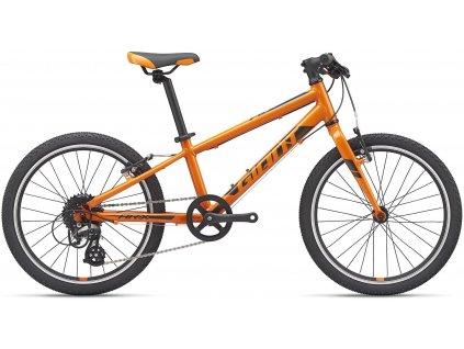 GIANT ARX 20 Orange 2021