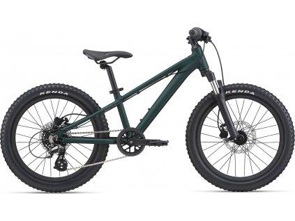 GIANT STP 20 FS-GIANT Trekking Green 2021