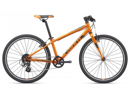 2513 1 giant arx 24 orange black 2020