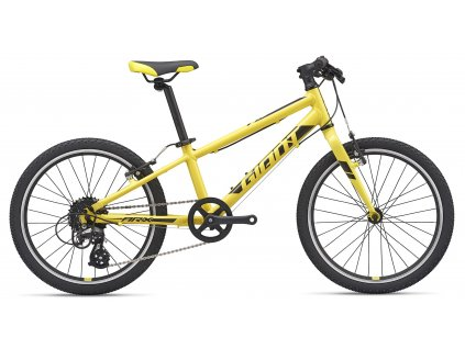 2531 1 giant arx 20 lemon yellow black 2020