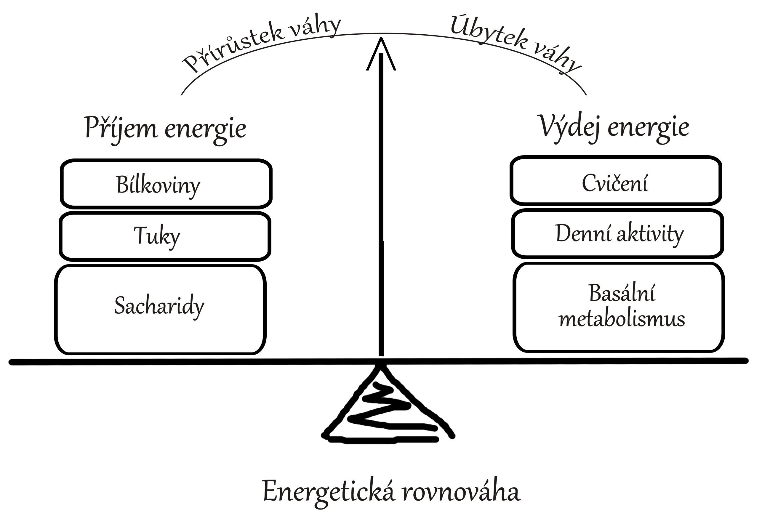 Energetická rovnováha