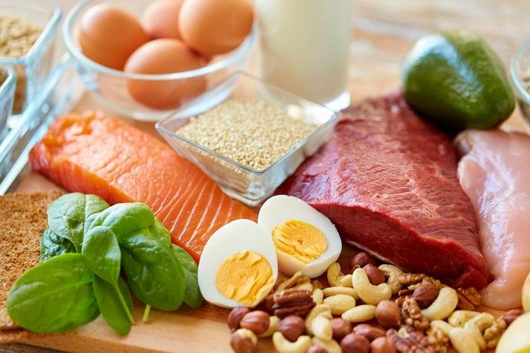 Bilkoviny = protein