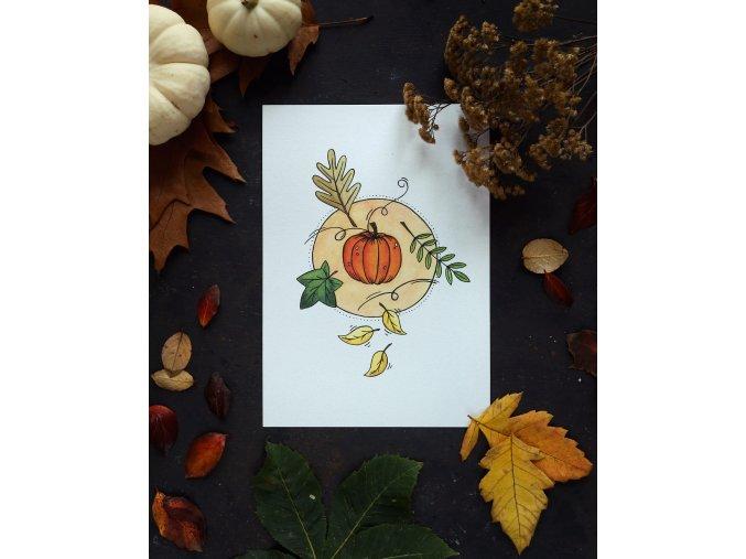 Dýně, královna podzimu