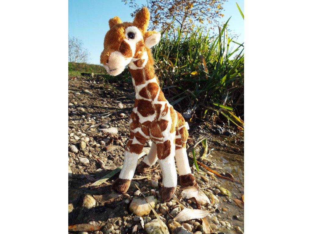 Plyšová žirafa 27cm