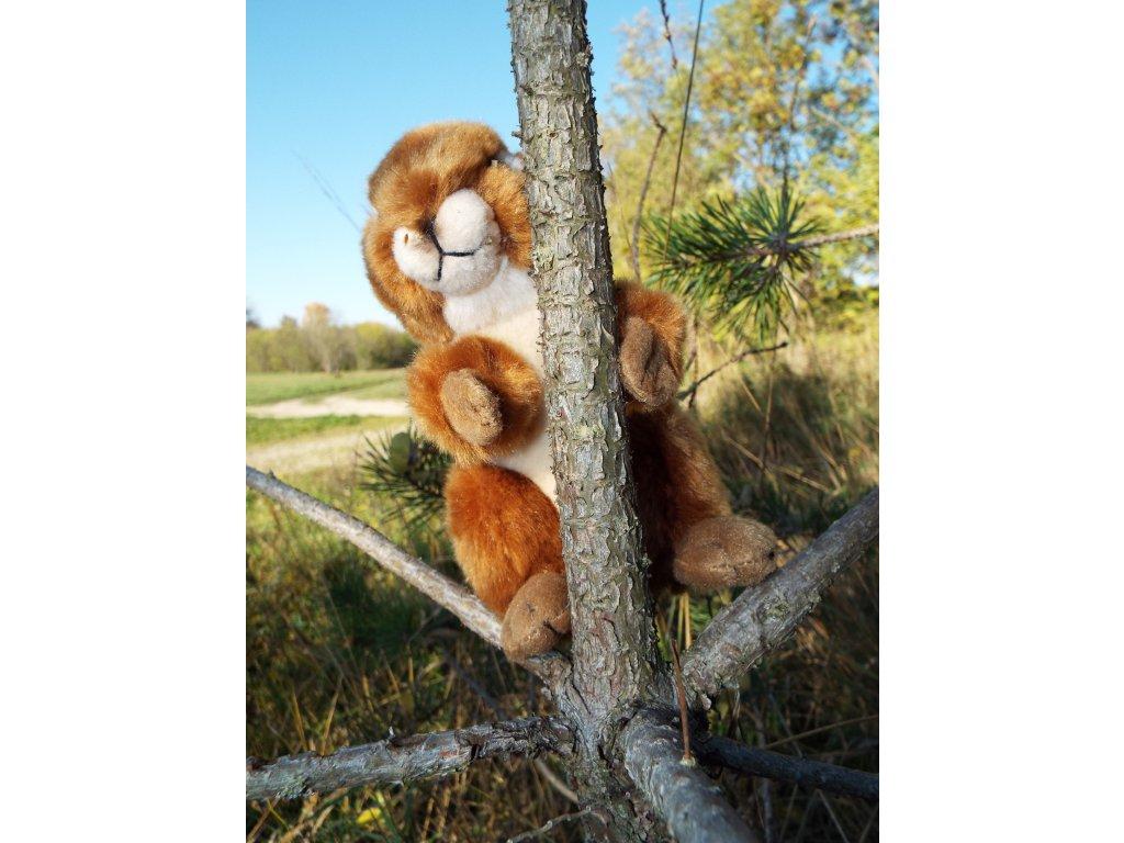 Plyšová veverička 16cm