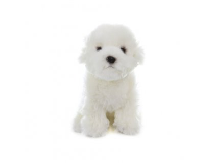 plysovy pes maltezak
