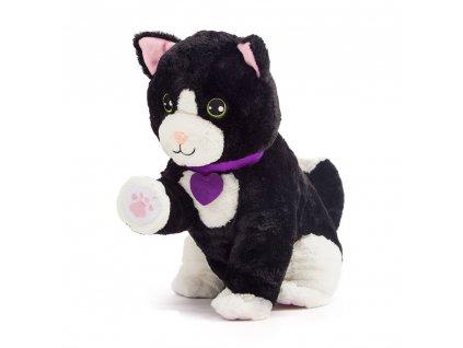 intaraktívna mačka