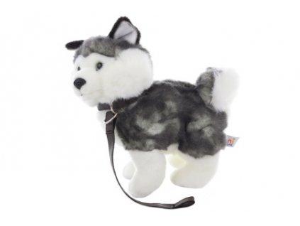 husky pes