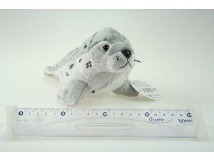 plyšový tuleň