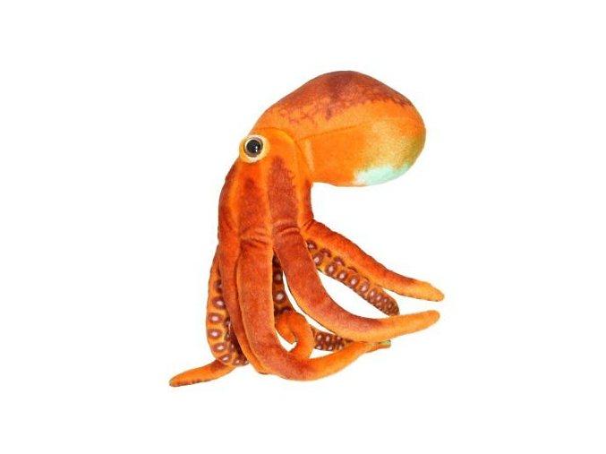 plyšová chobotnica
