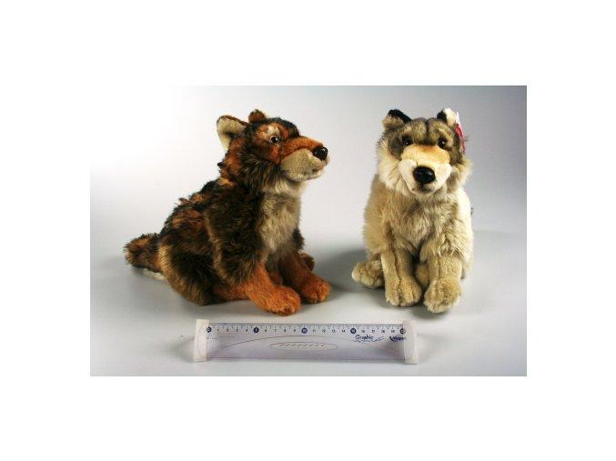 plysovy vlk