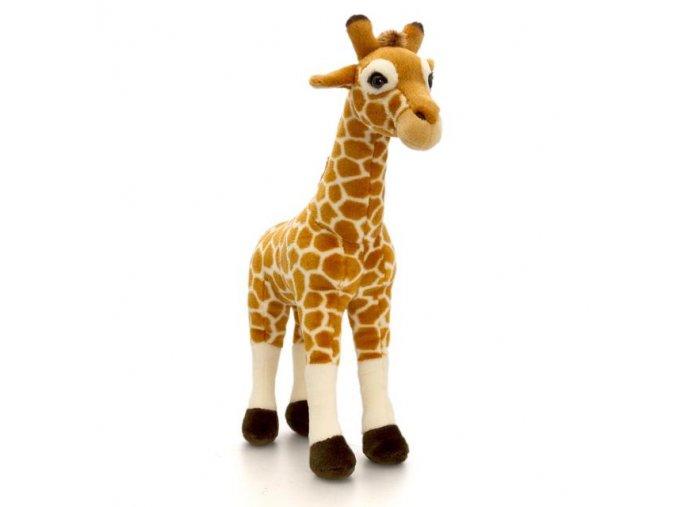 Plyšák žirafa