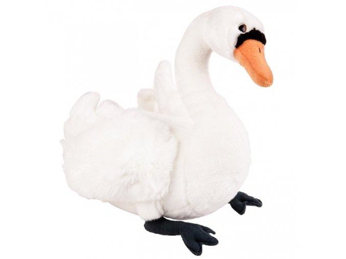 plyšová labuť