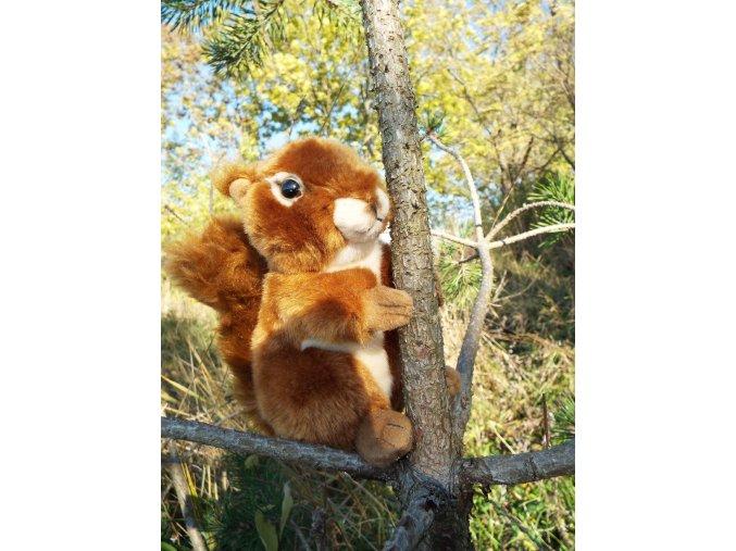 Plyšová Veverička 16 cm
