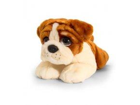 plysovy pes buldog