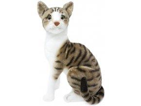 plysova kočka