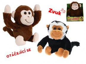 interaktívna opica
